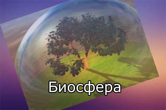 Автор термина биосфера