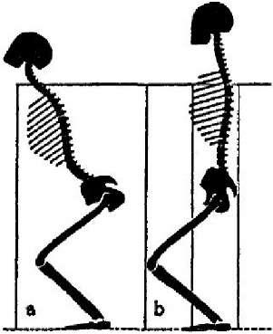 Как правильно лежать на полу для исправления позвоночника